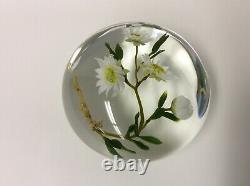 Beautiful Vintage Paul Stankard Floral Daisy Art Glass Paperweight B979 1983