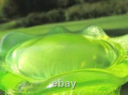 Rare Fenton Cactus Topaz Vaseline Opalescent Eau Jeu De 7